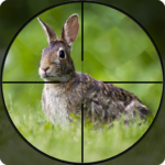 Rabbit Hunting Challenge 2019 – Shooting Games FPS 1.2  (MOD, Unlimited Money)