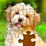 Jigsaw Puzzles Pro 🧩 – Free Jigsaw Puzzle Games 1.5.2 (MOD, Unlimited Money)