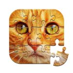Unlimited Puzzles – free jigsaw for kids and adult 2021.08.05/2 (MOD, Unlimited Purchase)