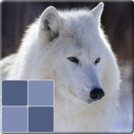 Animals Memory Game 2.2 (MOD, Unlimited Money)