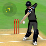 Smashing Cricket – a cricket game like none other 3.1.6 (MOD, Unlimited Diamonds)