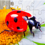 Insect Jigsaw Puzzles Game – For Kids & Adults 🐞 27.0 (MOD, Unlimited Money)
