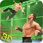 Tag Team Wrestling Superstars Fight: Hell In Cell  1.1.3 (MOD, Unlimited Money)