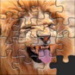 Puzzles for Adults no internet Varies with device 1.4.8 (MOD, Unlimited Money)